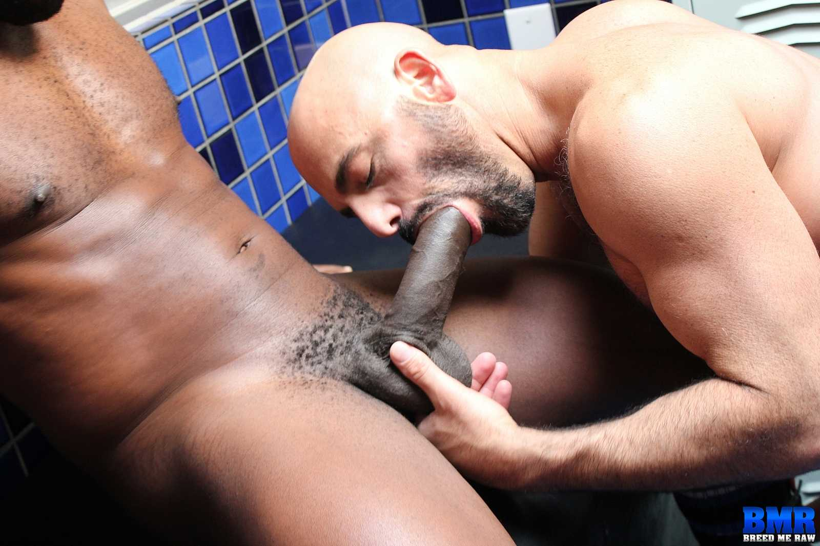 Gay Sex Black Dick Boy Fight Club