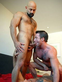 Three gay hunks with gorgeous hard bodies suck and fuck each other with abandon