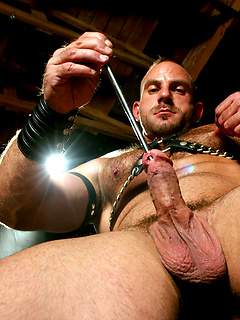 Kinky leather dude with a hairy chest slides a sounding rod down his urethra