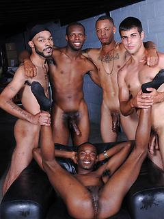 Four incredibly endowed dudes enjoyed banging a black stallion in a gangbang