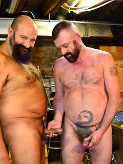 Bears in the basement blow each other and their mouths slobber lustily